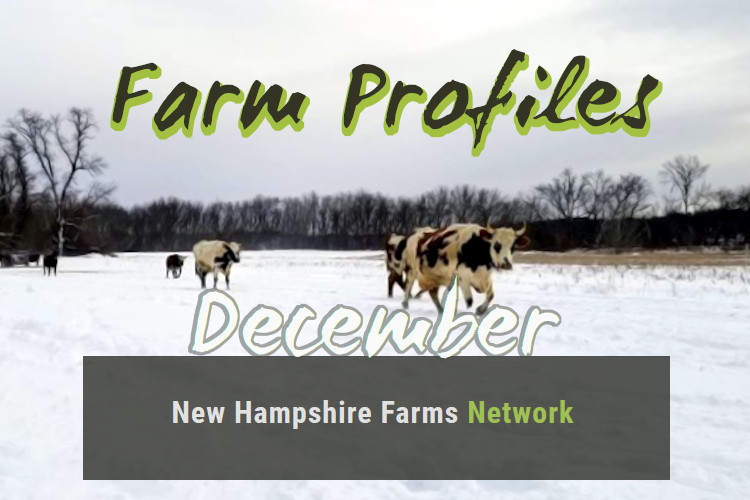Farm Profiles December 2019
