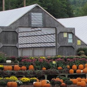 Devriendt Farm, Goffstown, NH