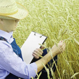 crop inspection