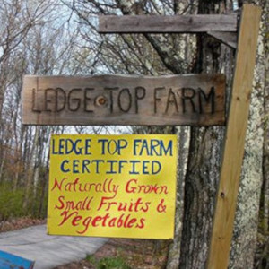 Ledge Top Farm, Wilton, NH