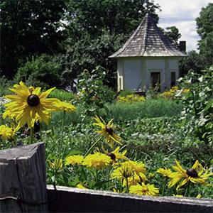 Muster Field Farm, North Sutton, NH