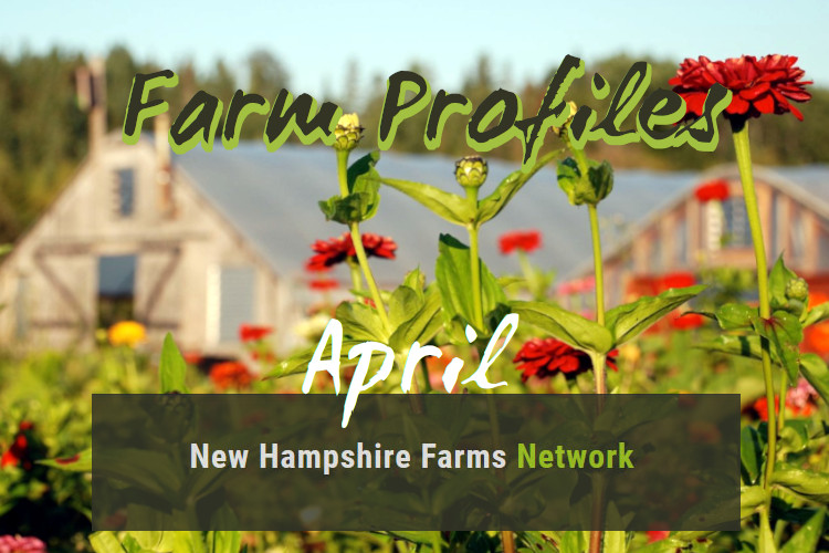 Farm Profiles April 2020