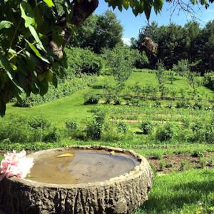 Cheshire Garden, Winchester NH