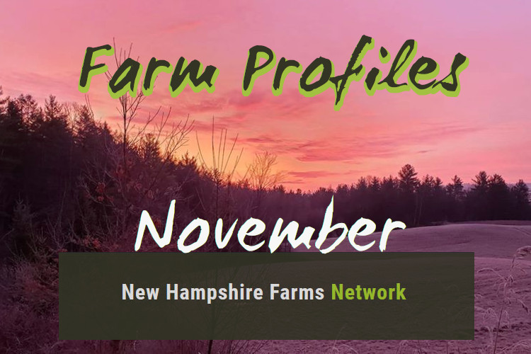 Farm Profiles November 2020